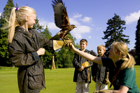 Treat the whole family with a trip to Gleneagles this February half term