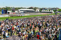 Melbourne Cup not to be missed