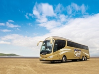 Bakers Dolphin Gold Coach