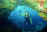 Region of Murcia invites diving fans to take the plunge this summer