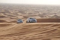 Experience the wilderness of the Abu Dhabi desert