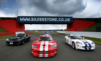Record numbers of Vipers to snake around Silverstone