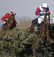 What makes the grand national the best steeplechase in the world?