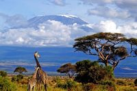 5 reasons why your next adventure should be Tanzania